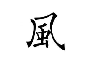 История одного иероглифа: ветреный 风 fēng