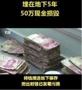Деньги, поражённые плесенью