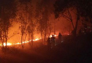 18 погибших спасателей. Фото мартовских пожаров на юго-западе Китая
