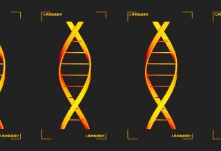 Китай собирает образцы ДНК у миллионов мужчин. Для борьбы с преступностью или подавления оппозиции?