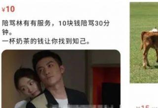Пользователям Таобао в Китае предложили за деньги раскритиковать героиню сериала
