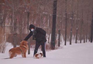 Новости Китая, вечер: сильная снежная буря и дефекты iPhone 12