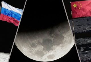 Новости Китая, вечер: победа Huawei над Chanel и крупная контрабанда женьшеня